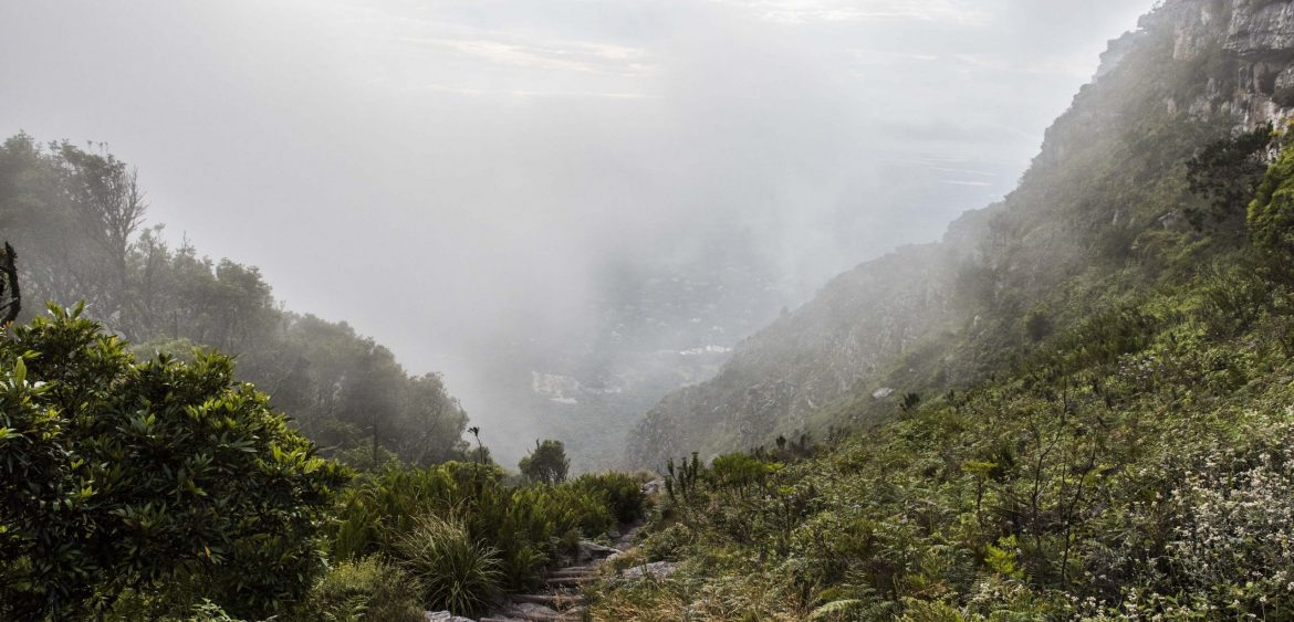 Table Mountain Hike, Cape Town