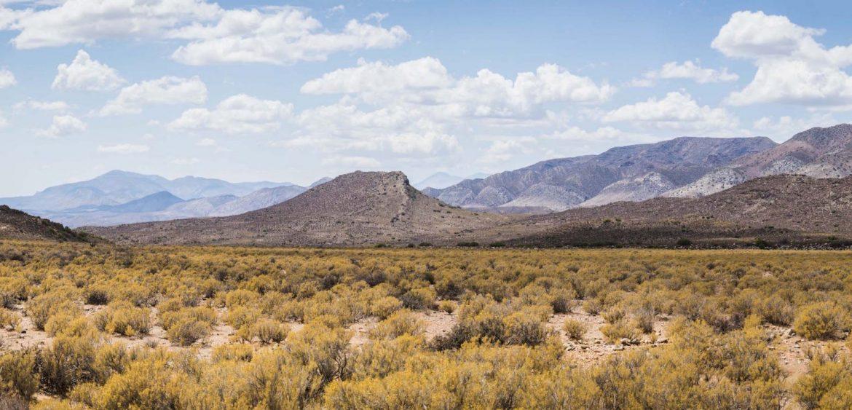 Western Province, Great Karoo