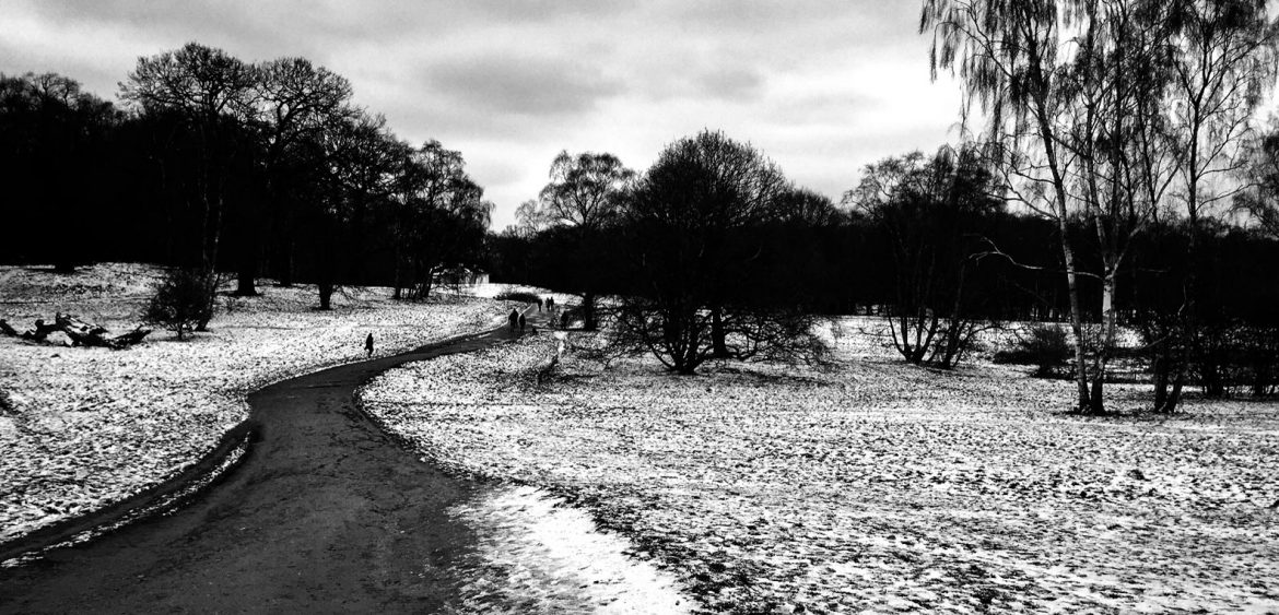 Let it snow London, Hampstead Heath